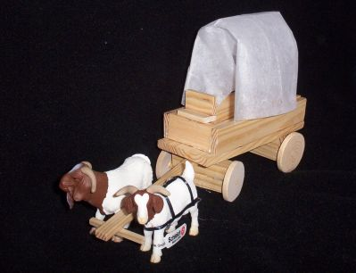 Goat powered covered wagon